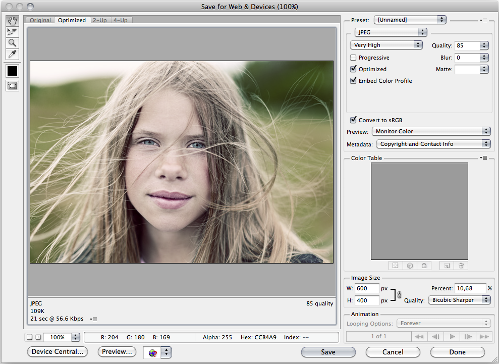 Image showing save for web in Photoshop
